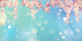 Spring Blossom Background - 242957965