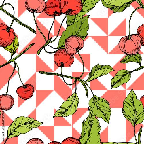Vector Cherry fruits on white background. Green leaf. Red and green engraved ink art. Seamless background pattern.