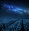 Big and blue milky way over field at night