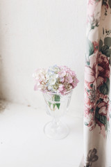 Beautiful hydrangea flowers in vintage glass with water on rustic white wood of old windowsill. Countryside still life. Happy mothers day. Creative tender spring image © sonyachny