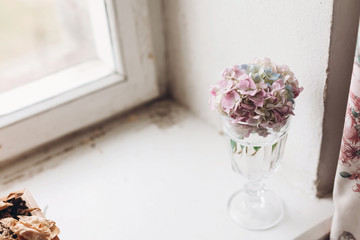 Beautiful hydrangea flowers in vintage glass with water on rustic white wood of old windowsill. Countryside still life. Happy mothers day. Creative tender spring image. Space for text © sonyachny