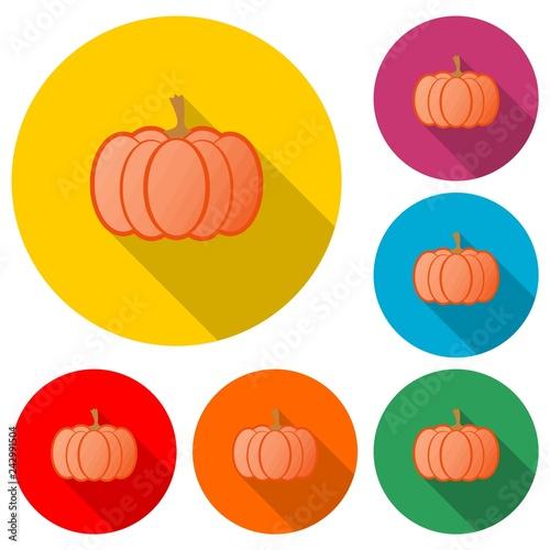 Pumpkin icon or logo, Autumn Pumpkin, color set  with long shadow - 242991504