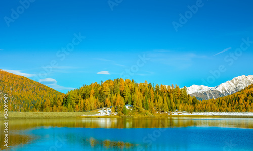 autumn landscape in Ultental ( Ultimo Valley) with a trees in autumn colors.the little Lake Fontana Bianca at almost 1,900 m a.s.l.,Dolomites, South Tyrol, province of Bolzano, Italy, Europe.