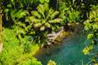Einsame kleine Insel vor Hawaii, Oahu im Pazifik