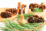 Pine tree aromatherapy, green needles boughs, cones, aromalamp with sticks on table with natural branches, winter scents. - 243034122