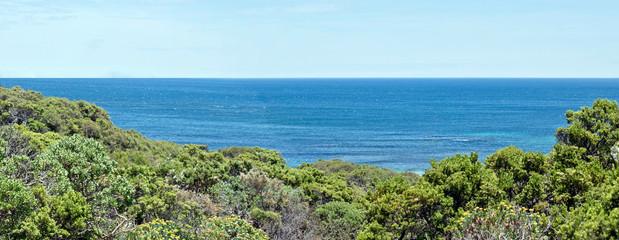 landscape at  kangaroo Island South Australia © susan flashman