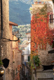 Dolceacqua (ligurian Region, Northern Italy): old city view. Color image - 243108153
