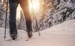 Leinwandbild Motiv Cross Country Skiing
