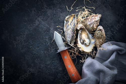 Oyster. Fresh oysters closeup with knife on dark background. Oyster dinner in restaurant. Gourmet food
