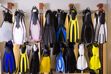 Image of the variety flippers in the diving store - 243114731