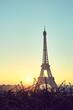 Tower Eiffel during sunrise on trocadero