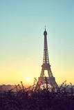 Fototapeta Fototapety z wieżą Eiffla - Tower Eiffel during sunrise on trocadero © LR Photographies
