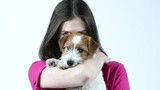 Pretty caucasian brunette woman with her Small bearded jack russell terrier puppy in studio. - 243145335