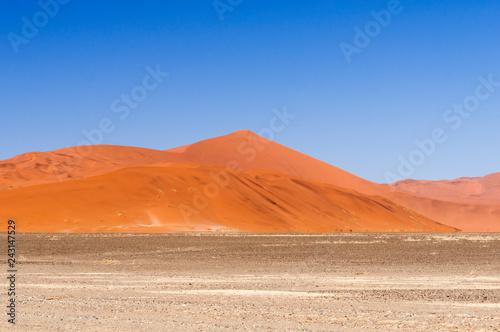 Dunes in the Namib desert / Dunes in the Namib desert, Namibia, Africa.