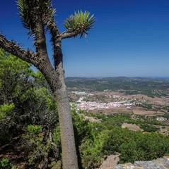 Blick auf Es Mercadal auf Menorca vom El Toro