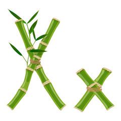 Bamboo letter X © ayax