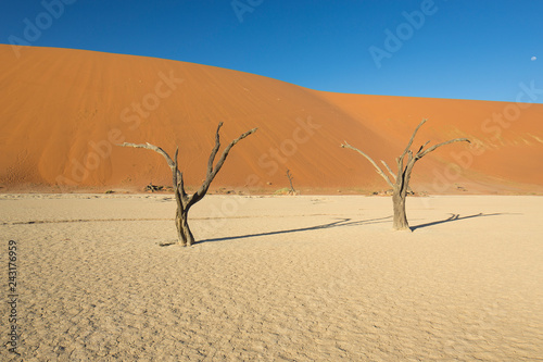 Sossusvlei & Deadvlei Namibia