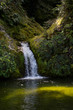 Water Falls In New Zealand - 243177366