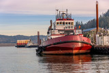 Tug boats moored in Oregon countryside. - 243182106