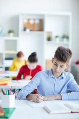 Diligent schoolboy in blue shirt making notes or drawing by desk with two girls on background © pressmaster