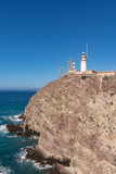 view of the lighthouse of Cabo de Gata - 243195741