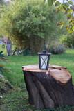 Laterne auf Baumstamm im grünen Garten - 243202994