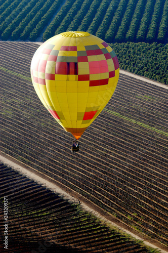 Yellow hot air ballon as it flies over fields of orange trees in Temecula Valley.  - 243209371