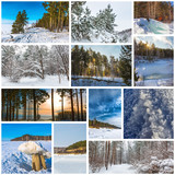 Collage seasons-winter. The Nature Of Western Siberia - 243213711