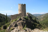 Châteaux de Lastours - 243217120