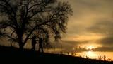 hunters at sunset - 243220525