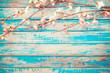 Cherry blossom flowers on vintage wooden background, border design. vintage color tone - concept flower of spring or summer background