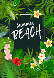 Summer vacation poster with tropical palm leaves - 243234395