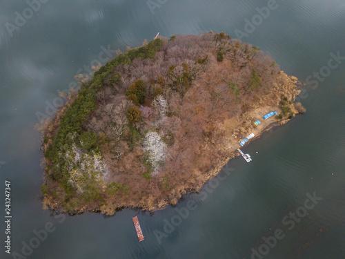 鵜の島 island in the Japan Lake Kawaguchi