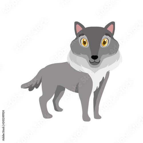 Obraz na płótnie Cute grey wolf, lovely animal cartoon character vector Illustration