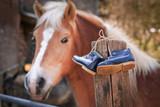 blaue Kinderschuhe an Pferdekoppel - 243252958