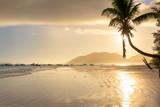 Beautiful sunrise over the tropical beach in Caribbean island. - 243258907