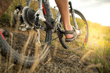 Mountain bike. Low angle view of cyclist riding mountain bike on rocky trail at sunset - 243273190