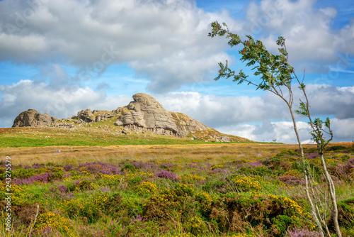Saddle Tor in Dartmoor, Devon, UK