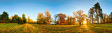 Autumn park with sun and forest - Panorama - 243280731