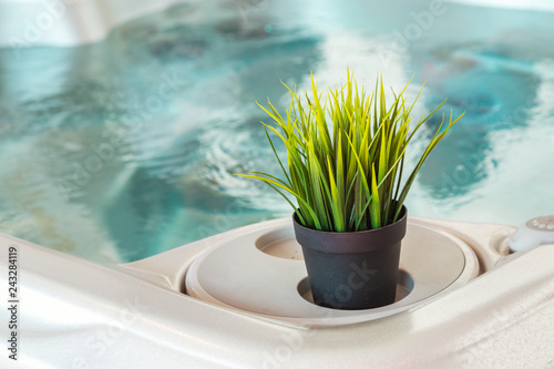 bath tub with decorative plants evoking a calm and relaxed atmosphere