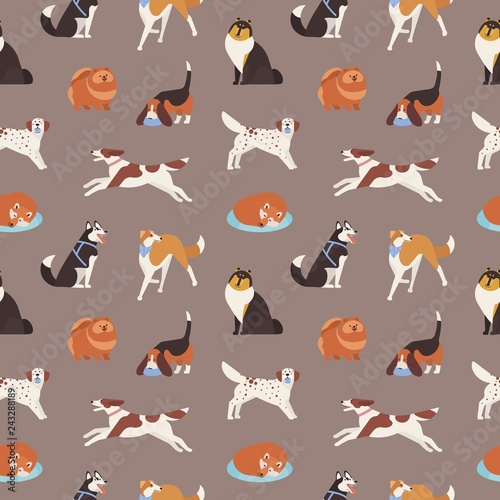 mata magnetyczna Seamless pattern with cute dogs of various breeds playing, running, walking, sitting, sleeping. Backdrop with adorable cartoon pet animals on grey background. Flat cartoon vector illustration.