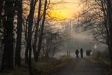 persone nella nebbia - 243288571