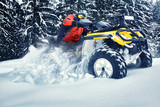 Winter walk on the quad bike in the forest. - 243303723