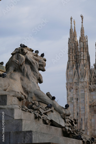 lion in the Piazza del Duomo (Cathedral Square) in Milan - lombardy.