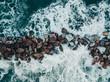 Quadro Onde dell'Oceano si infrangono tra gli scogli difensivi, vista volo d'uccello.