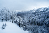Panorama of the foggy winter landscape in the mountains. - Image - 243320553