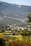 View of Bedoin in Provence, France