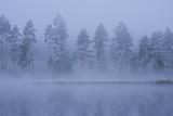 Foggy lake landscape in Finland at summer dawn - 243326317