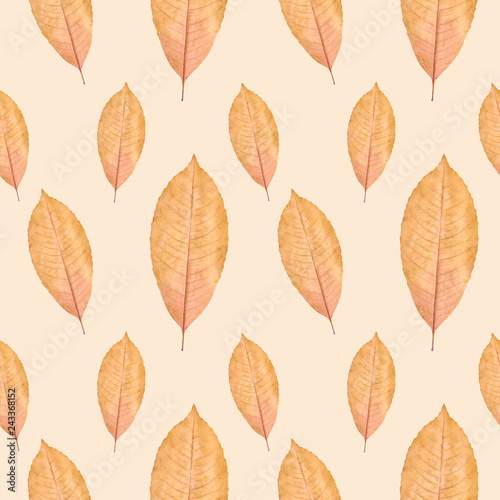Foto Murales Close up of yellow autumn leaf seamless pattern background