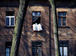 Lodz, Poland - March, 2012: the workers' houses, Ksiezy Mlyn in Lodz